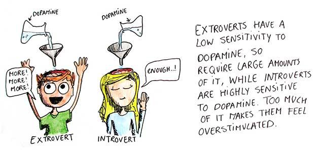 Introvert og ekstrovert: Din personlighed kan måles i hjernen
